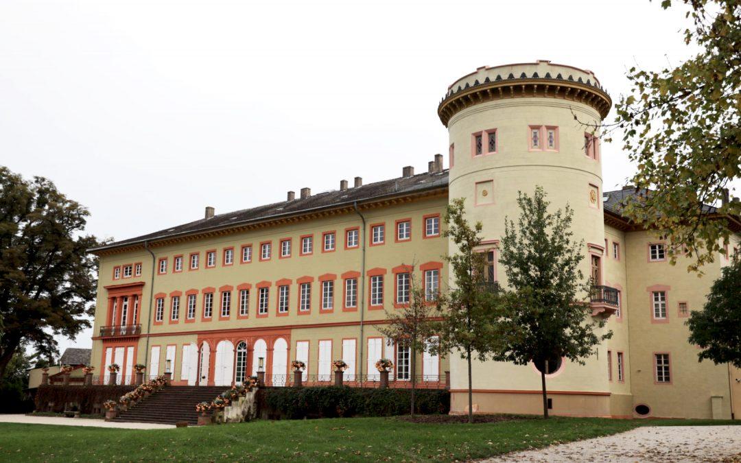 Schloss Herrnsheim, Magazinierung